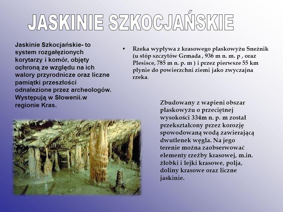 Jaskinie Szkocjańskie- to system rozgałęzionych korytarzy i komór, objęty ochroną ze względu na ich walory przyrodnicze oraz liczne pamiątki przeszłoś