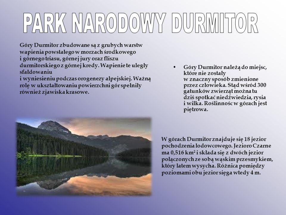 W górach Durmitor znajduje się 18 jezior pochodzenia lodowcowego. Jezioro Czarne ma 0,516 km 2 i składa się z dwóch jezior połączonych ze sobą wąskim