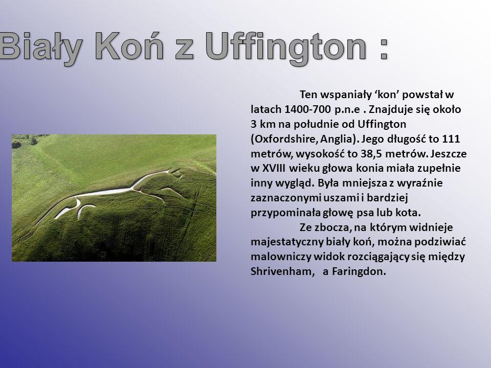 Ten wspaniały kon powstał w latach 1400-700 p.n.e. Znajduje się około 3 km na południe od Uffington (Oxfordshire, Anglia). Jego długość to 111 metrów,