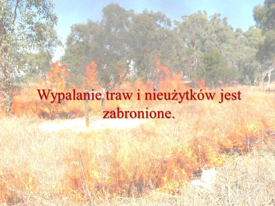 Wypalanie traw i nieużytków jest zabronione.