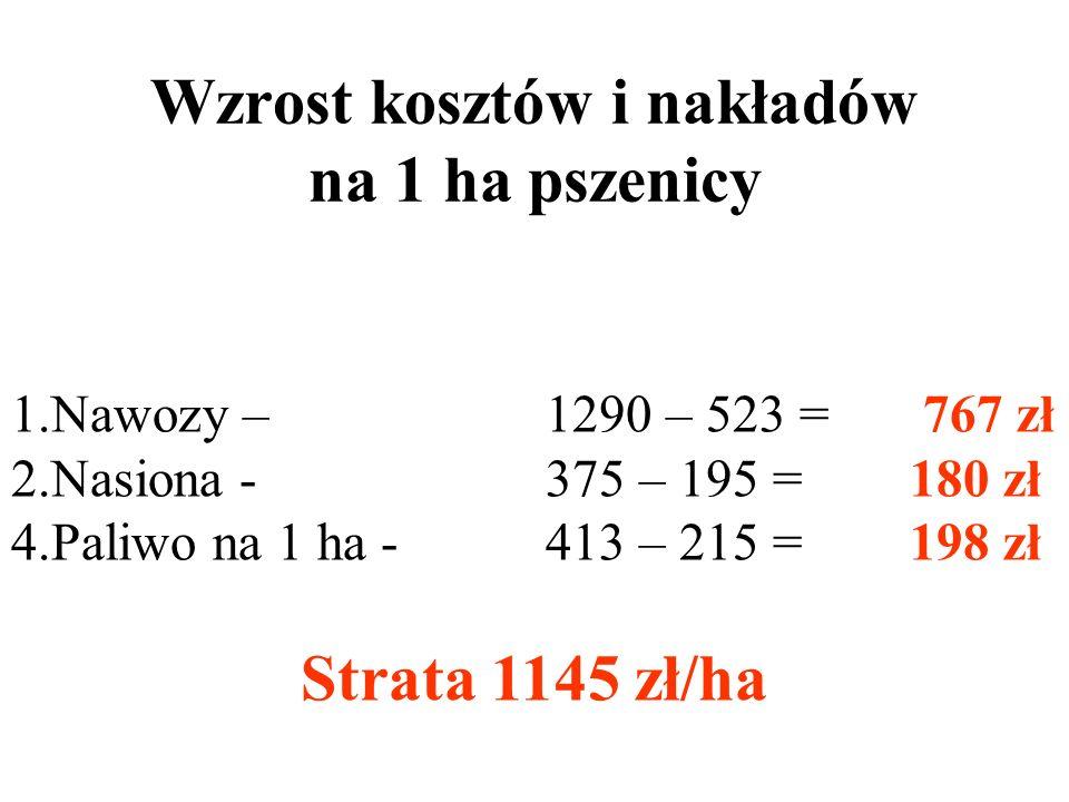 Wzrost kwotowy i procentowy na 1ha kukurydzy Ceny kukurydzy 1. 670 zł/t bez dopłat x 6,00 t = 3900 zł/ha - styczeń 2004 r 2. 380 zł/t x 6,00 t = 2280