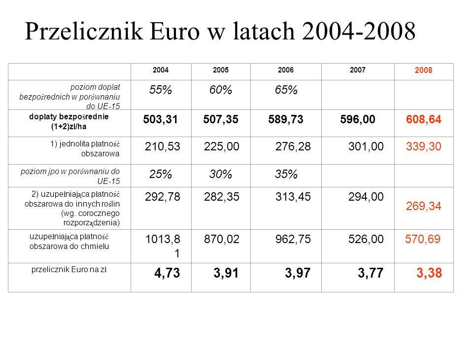 Bilans zysków - czy strat? sukces czy porażka? 2004 – 2008 październik Tadeusz Szymańczak