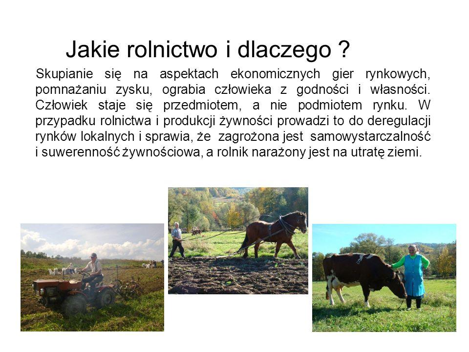 Jakie rolnictwo i dlaczego ? Skupianie się na aspektach ekonomicznych gier rynkowych, pomnażaniu zysku, ograbia człowieka z godności i własności. Czło