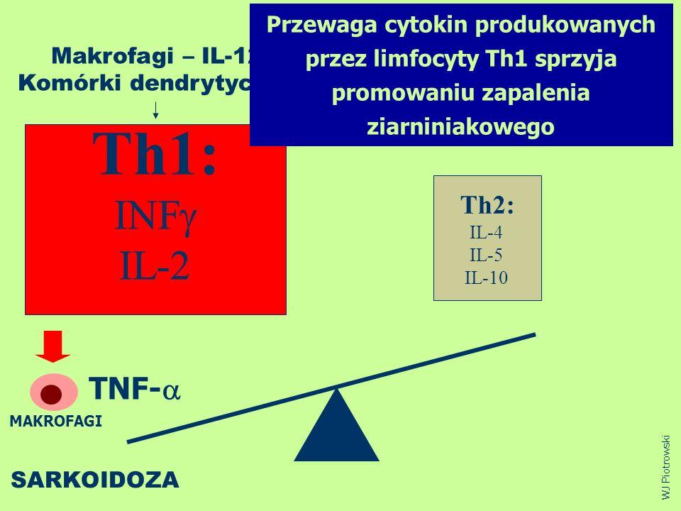 Th1: INF IL-2 Th2: IL-4 IL-5 IL-10 SARKOIDOZA Makrofagi – IL-12 Komórki dendrytyczne WJ Piotrowski Przewaga cytokin produkowanych przez limfocyty Th1