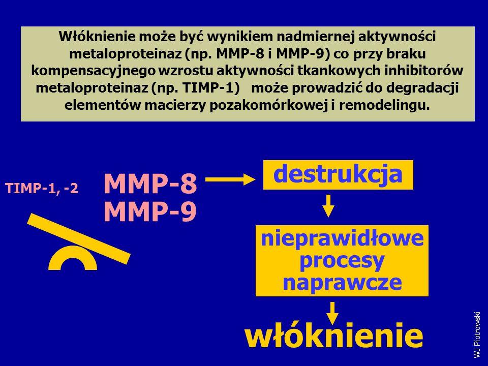 WJ Piotrowski Włóknienie może być wynikiem nadmiernej aktywności metaloproteinaz (np. MMP-8 i MMP-9) co przy braku kompensacyjnego wzrostu aktywności