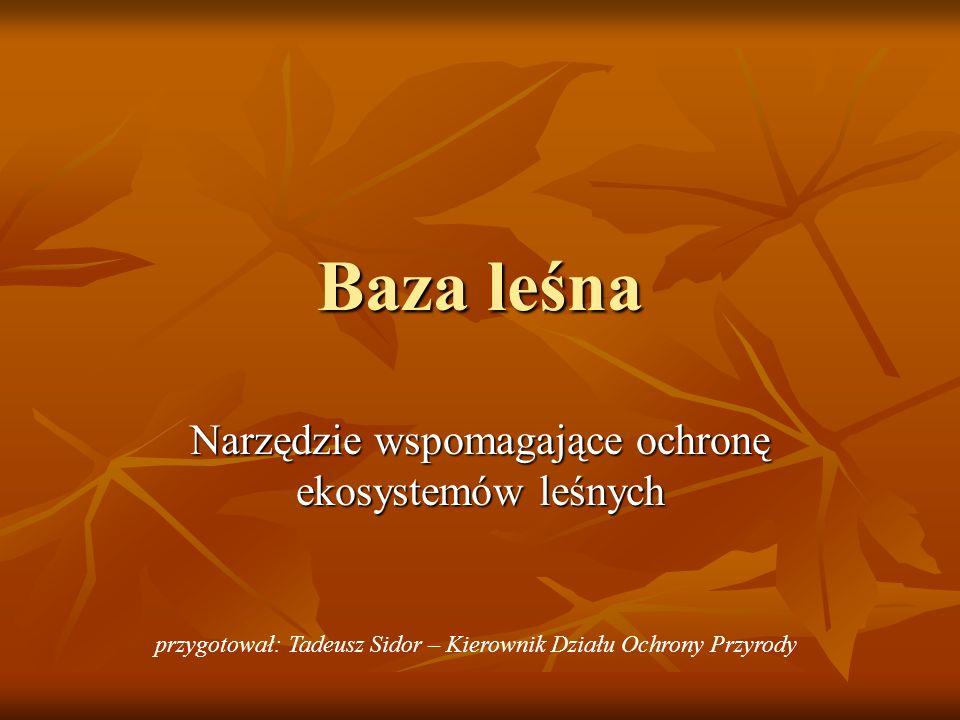 Baza leśna Narzędzie wspomagające ochronę ekosystemów leśnych przygotował: Tadeusz Sidor – Kierownik Działu Ochrony Przyrody