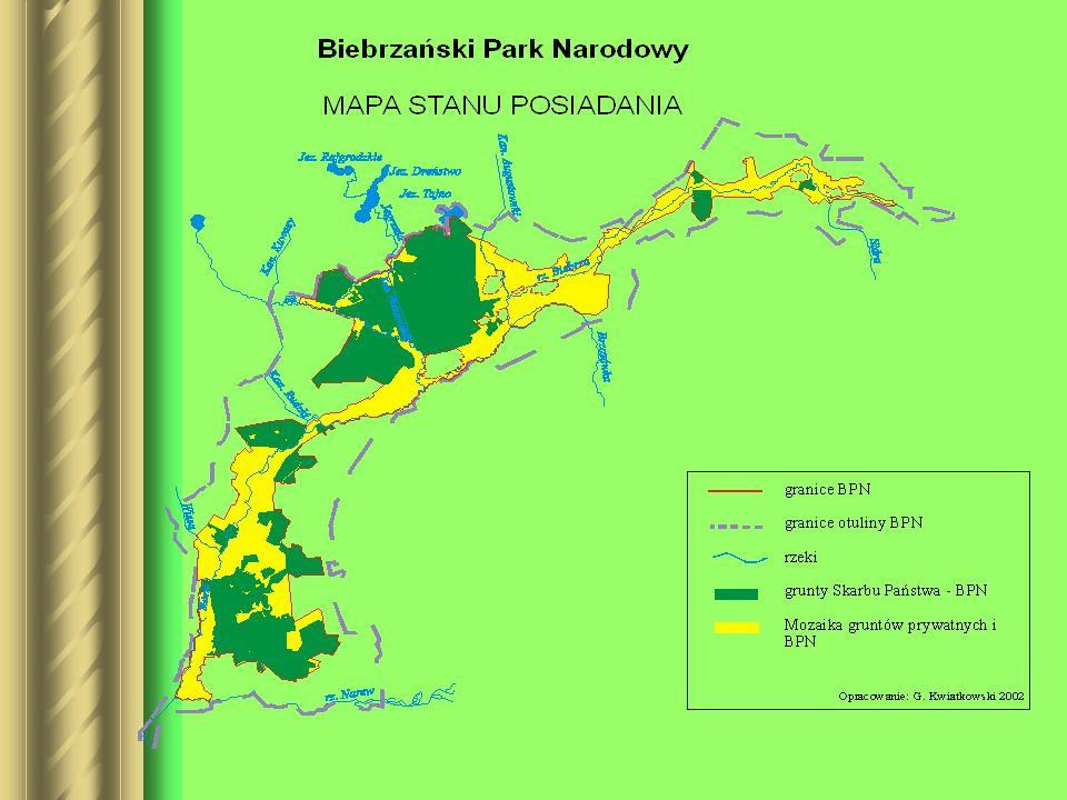 Baza własności Zawartość merytoryczna –Przechowuje ona informacje o działkach zlokalizowanych na terenie BPN.