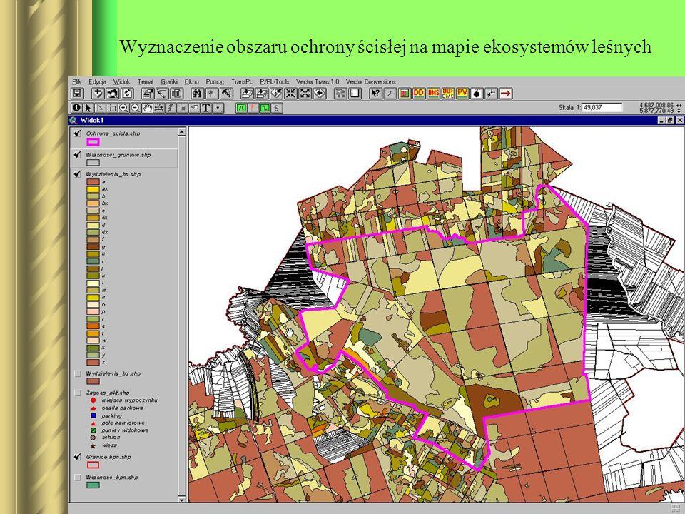 Wyznaczenie obszaru ochrony ścisłej na mapie ekosystemów leśnych