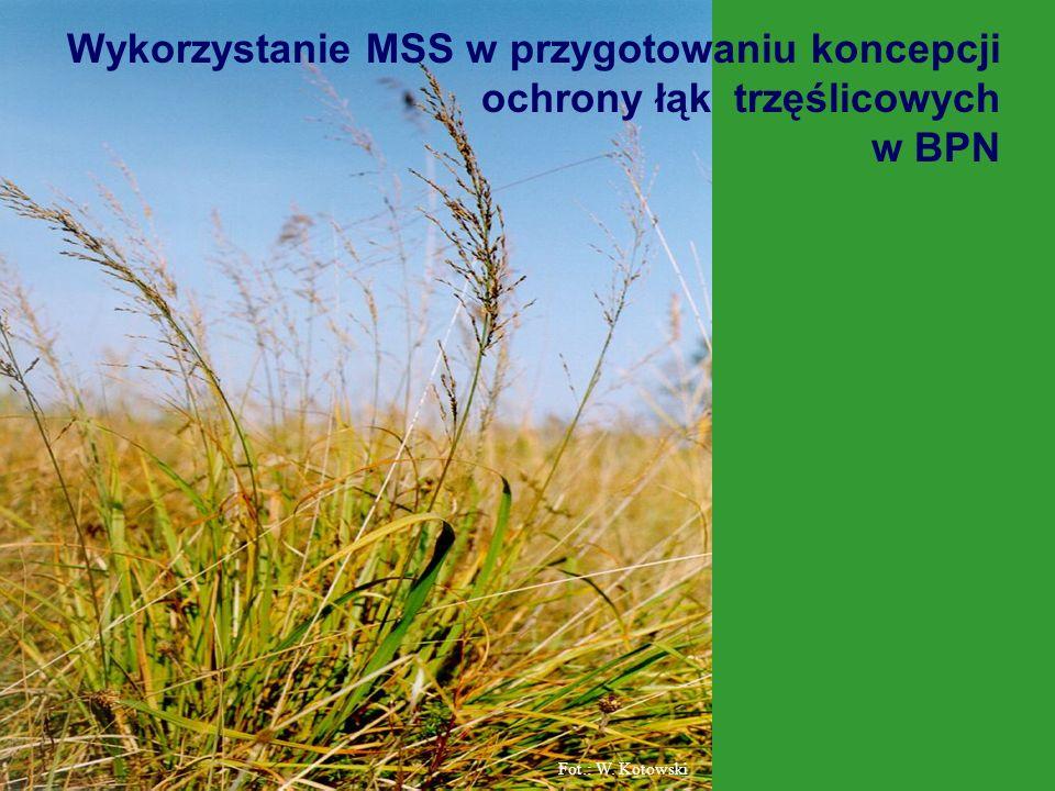 Fot.: W. Kotowski Wykorzystanie MSS w przygotowaniu koncepcji ochrony łąk trzęślicowych w BPN