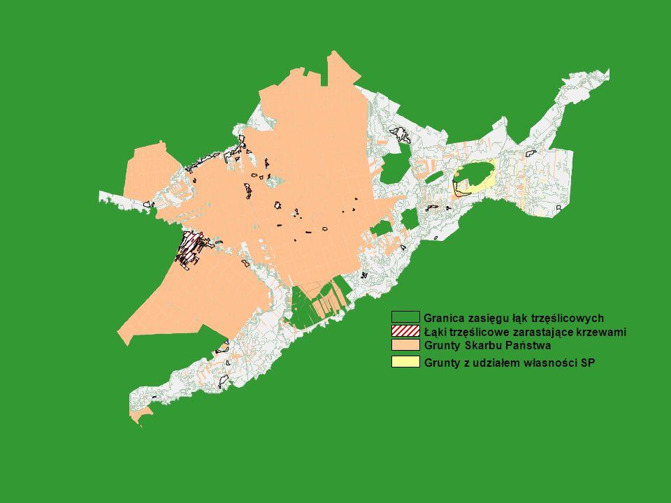 Granica zasięgu łąk trzęślicowych Łąki trzęślicowe zarastające krzewami Grunty Skarbu Państwa Grunty z udziałem własności SP
