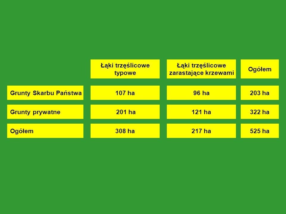 Grunty Skarbu Państwa Grunty prywatne Łąki trzęślicowe typowe 107 ha 201 ha Łąki trzęślicowe zarastające krzewami 96 ha 121 ha Ogółem308 ha217 ha Ogółem 203 ha 322 ha 525 ha