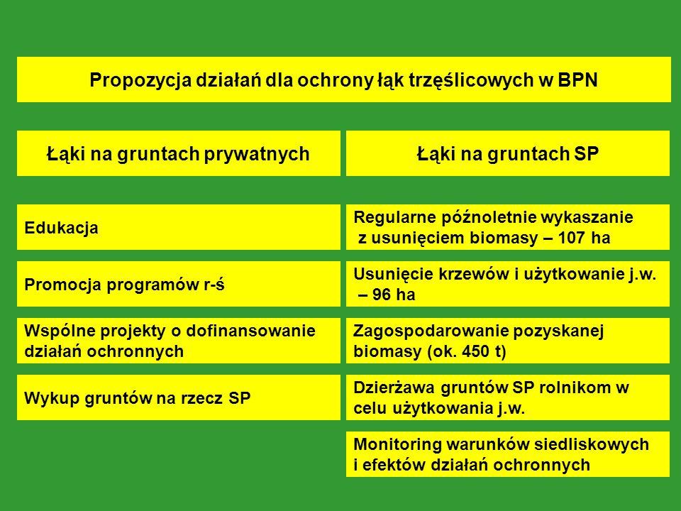 Łąki na gruntach prywatnych Edukacja Promocja programów r-ś Wspólne projekty o dofinansowanie działań ochronnych Łąki na gruntach SP Regularne późnoletnie wykaszanie z usunięciem biomasy – 107 ha Usunięcie krzewów i użytkowanie j.w.