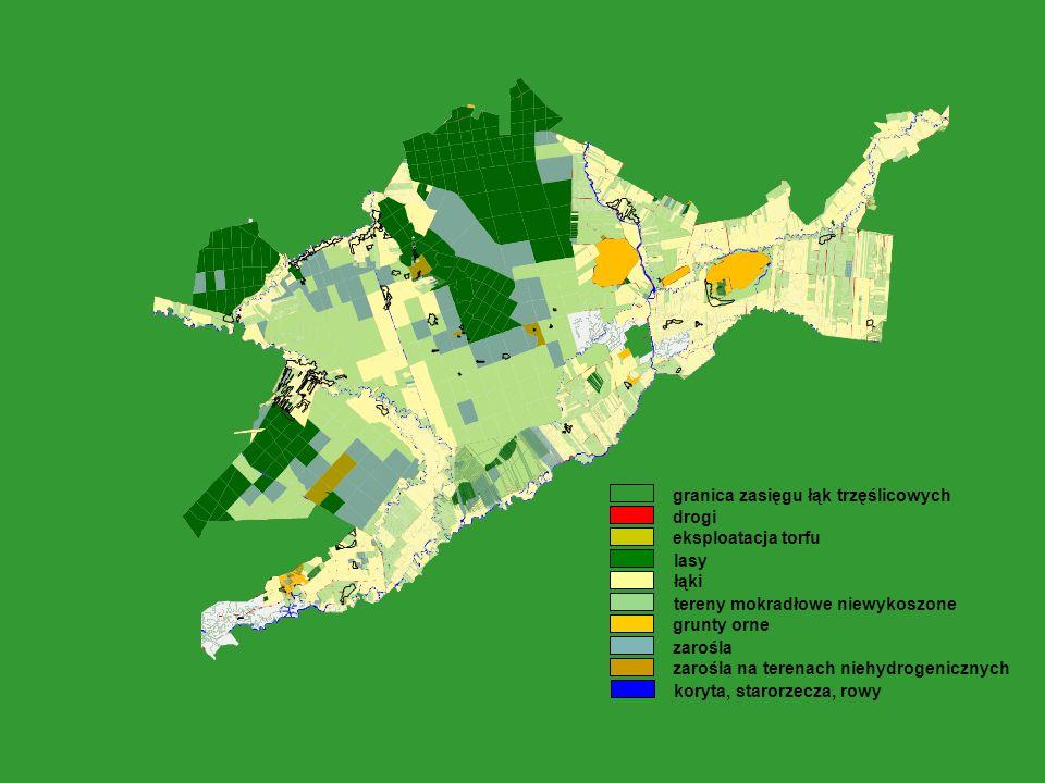 drogi eksploatacja torfu lasy łąki tereny mokradłowe niewykoszone grunty orne zarośla zarośla na terenach niehydrogenicznych koryta, starorzecza, rowy