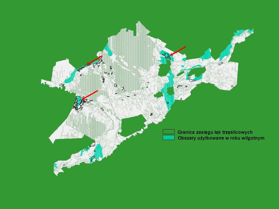 Granica zasięgu łąk trzęślicowych Obszary użytkowane w roku wilgotnym