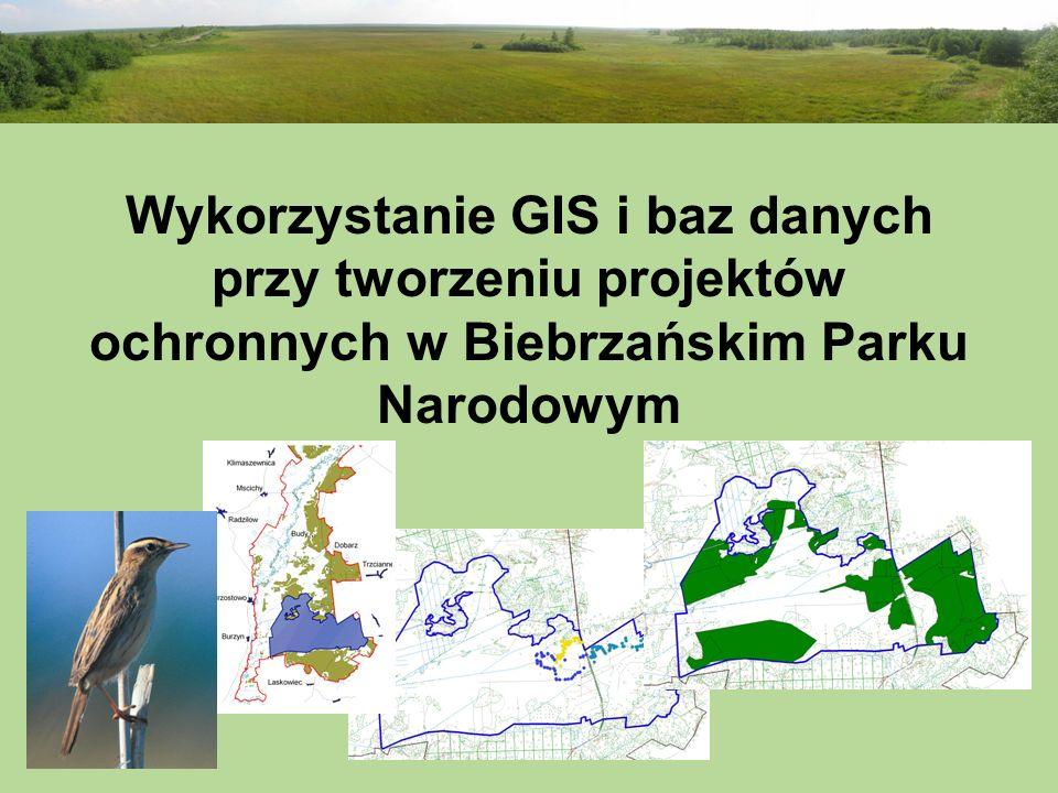 Wykorzystanie GIS i baz danych przy tworzeniu projektów ochronnych w Biebrzańskim Parku Narodowym