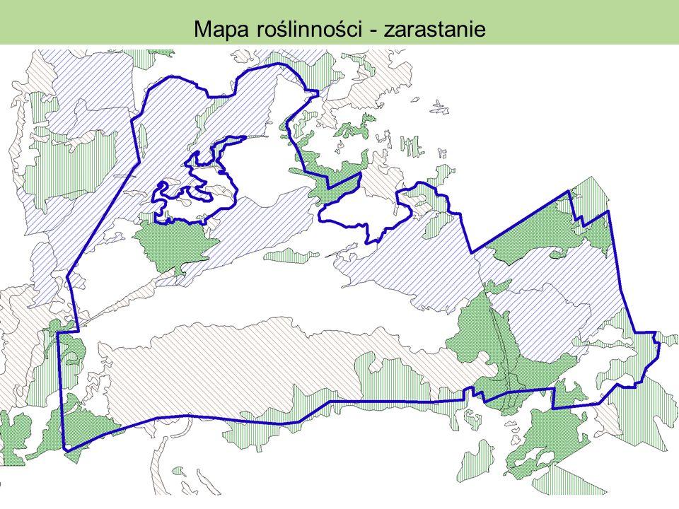 Mapa roślinności - zarastanie