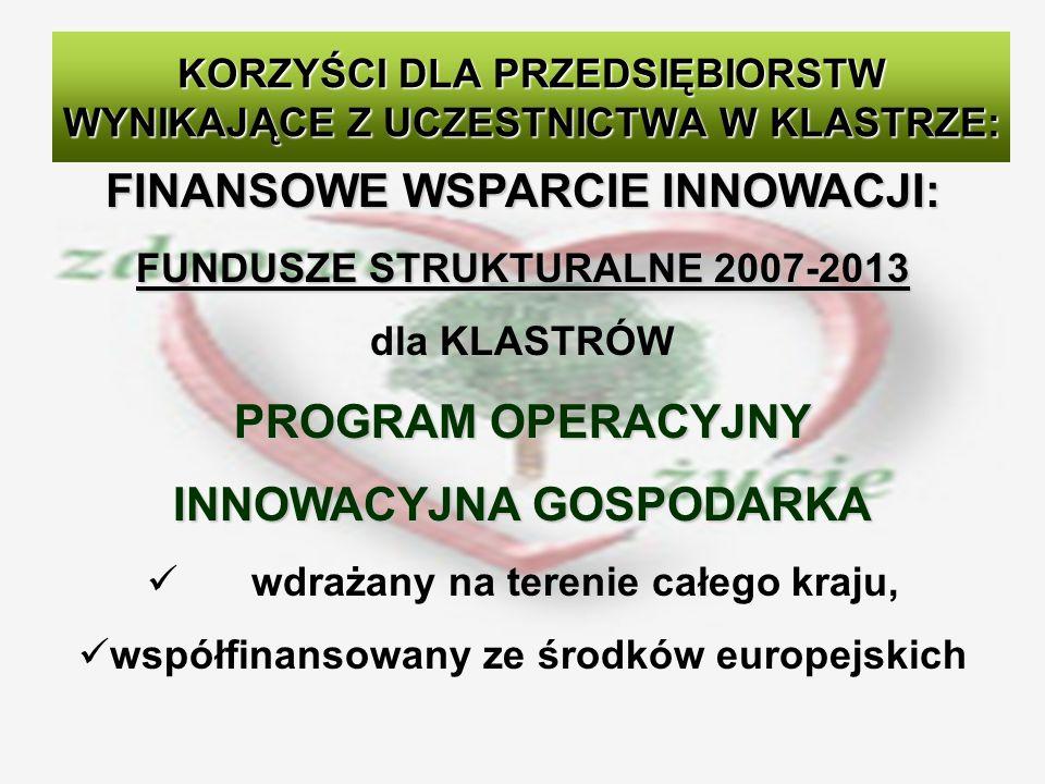 FINANSOWE WSPARCIE INNOWACJI: FUNDUSZE STRUKTURALNE 2007-2013 dla KLASTRÓW PROGRAM OPERACYJNY INNOWACYJNA GOSPODARKA wdrażany na terenie całego kraju, współfinansowany ze środków europejskich KORZYŚCI DLA PRZEDSIĘBIORSTW WYNIKAJĄCE Z UCZESTNICTWA W KLASTRZE: