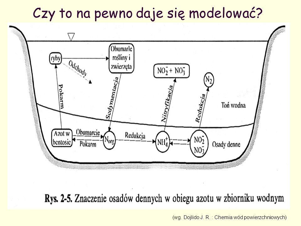 Stężenie w punkcie mg/l Stężenie poszerzone na odcinek mg/l Przepływ m3/h Ładunek kg/s