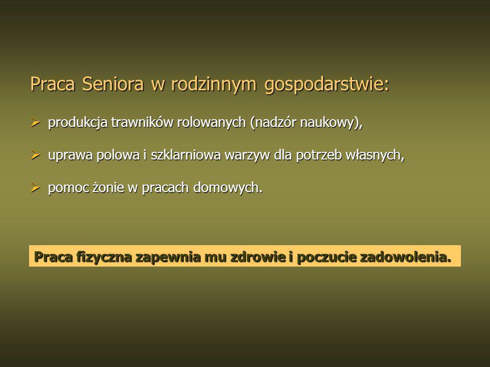 Praca Seniora w rodzinnym gospodarstwie: produkcja trawników rolowanych (nadzór naukowy), produkcja trawników rolowanych (nadzór naukowy), uprawa polo