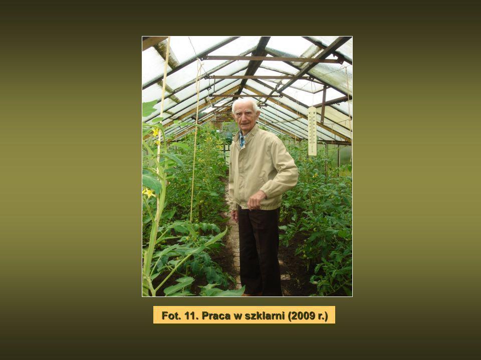 Fot. 11. Praca w szklarni (2009 r.)