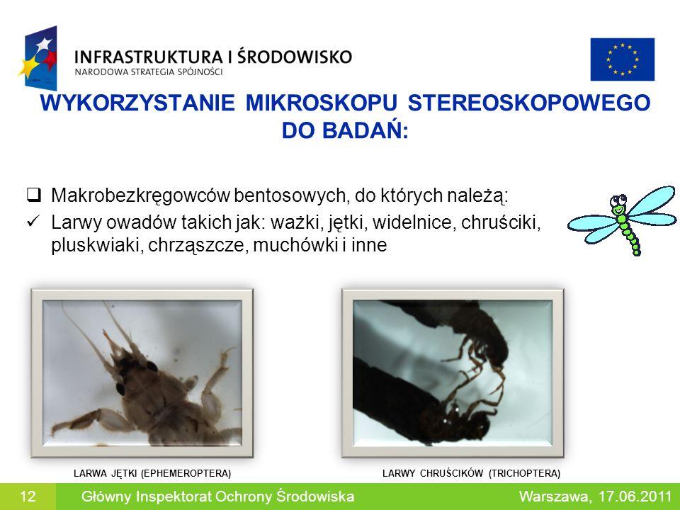 WYKORZYSTANIE MIKROSKOPU STEREOSKOPOWEGO DO BADAŃ: Makrobezkręgowców bentosowych, do których należą: Larwy owadów takich jak: ważki, jętki, widelnice,