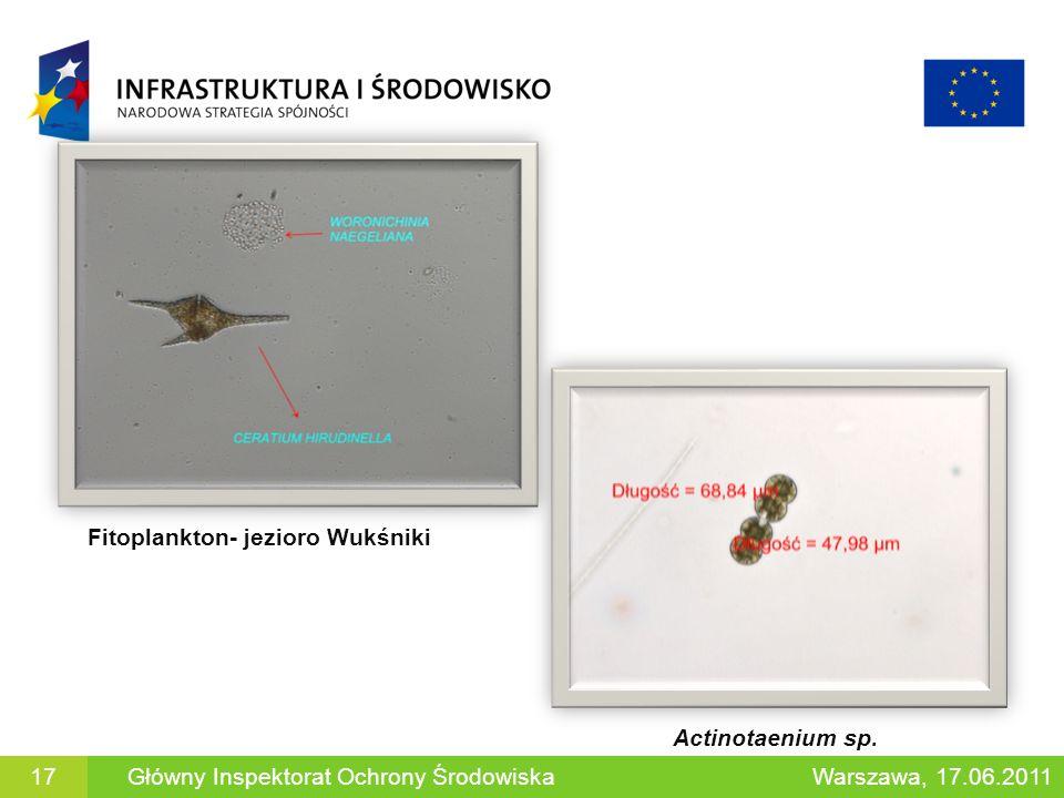 Actinotaenium sp. Fitoplankton- jezioro Wukśniki Warszawa, 17.06.2011Główny Inspektorat Ochrony Środowiska17