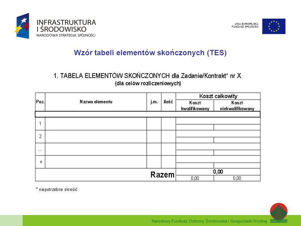 Narodowy Fundusz Ochrony Środowiska i Gospodarki Wodnej UNIA EUROPEJSKA FUNDUSZ SPÓJNOŚCI Wzór tabeli elementów skończonych (TES)