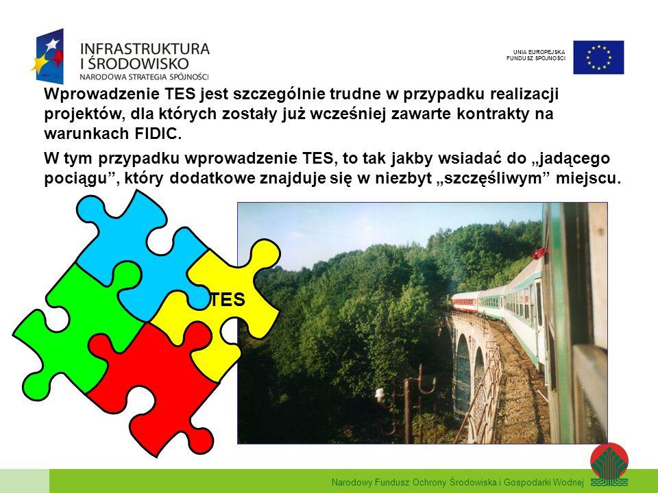 Narodowy Fundusz Ochrony Środowiska i Gospodarki Wodnej UNIA EUROPEJSKA FUNDUSZ SPÓJNOŚCI Wprowadzenie TES jest szczególnie trudne w przypadku realiza