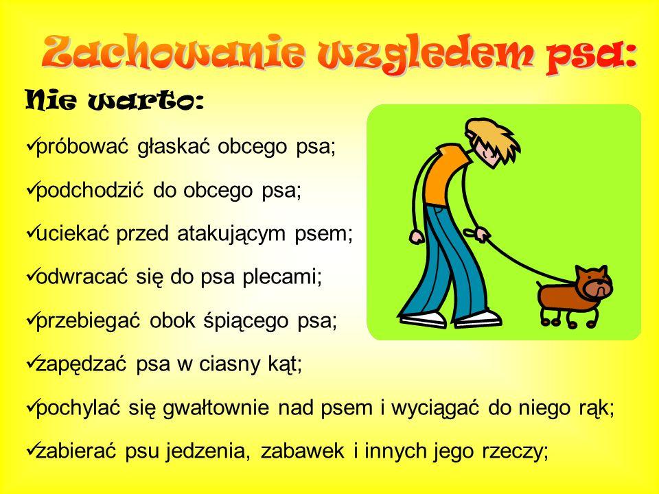 Nie warto: próbować głaskać obcego psa; podchodzić do obcego psa; uciekać przed atakującym psem; odwracać się do psa plecami; przebiegać obok śpiącego
