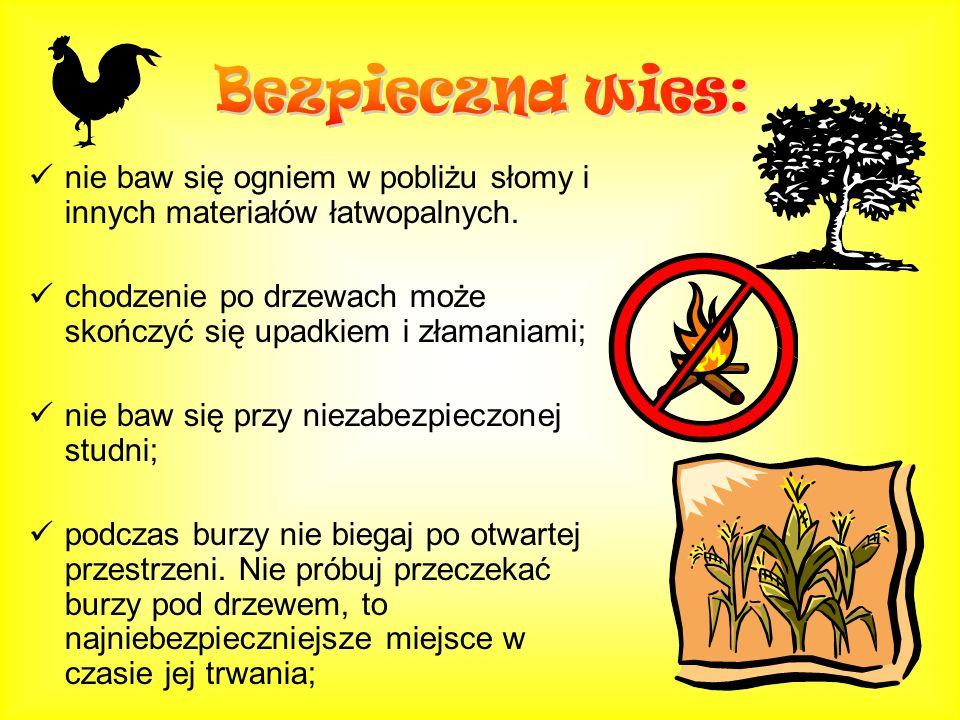 nie baw się ogniem w pobliżu słomy i innych materiałów łatwopalnych. chodzenie po drzewach może skończyć się upadkiem i złamaniami; nie baw się przy n