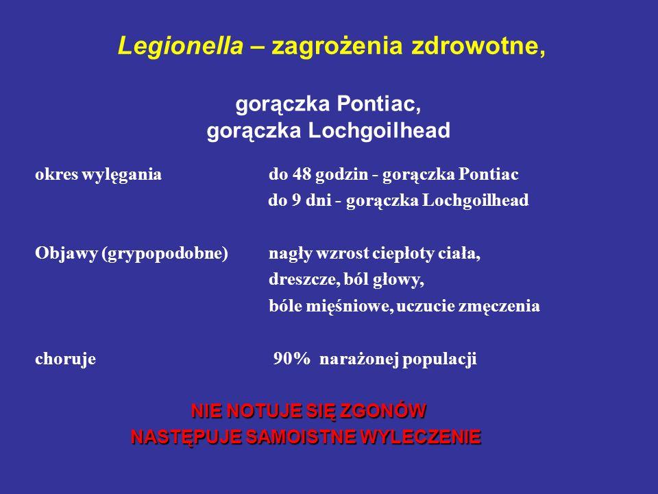 Legionella – zagrożenia zdrowotne, okres wylęgania do 48 godzin - gorączka Pontiac do 9 dni - gorączka Lochgoilhead Objawy (grypopodobne) nagły wzrost