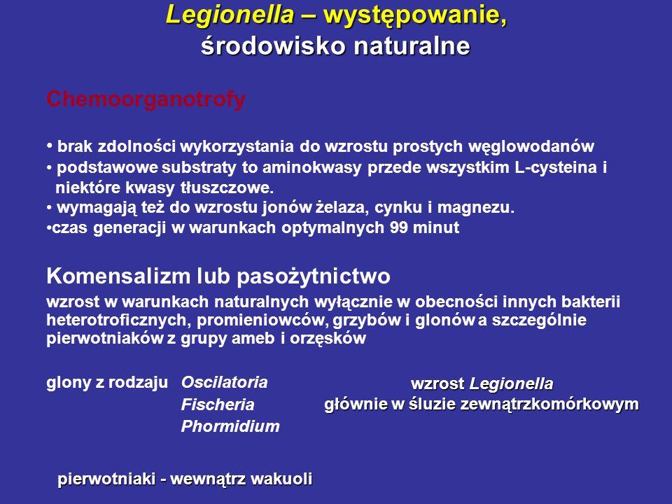 Legionella – występowanie, środowisko naturalne Chemoorganotrofy brak zdolności wykorzystania do wzrostu prostych węglowodanów podstawowe substraty to