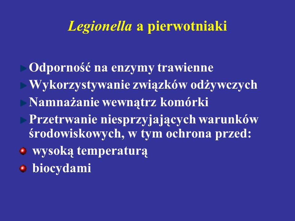 Legionella a pierwotniaki Odporność na enzymy trawienne Wykorzystywanie związków odżywczych Namnażanie wewnątrz komórki Przetrwanie niesprzyjających w