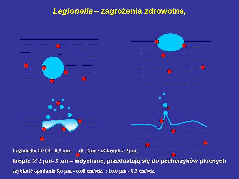 Legionella – zagrożenia zdrowotne, 1 3 2 4 Legionella 0,3 - 0,9 m, dł. 2 m ; kropli 2 m; krople 2 m- 5 m – wdychane, przedostają się do pęcherzyków pł