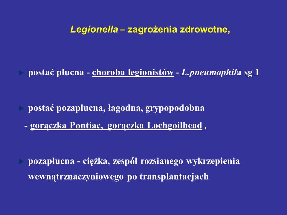 Legionella – zagrożenia zdrowotne, postać płucna - choroba legionistów - L.pneumophila sg 1 postać pozapłucna, łagodna, grypopodobna - gorączka Pontia