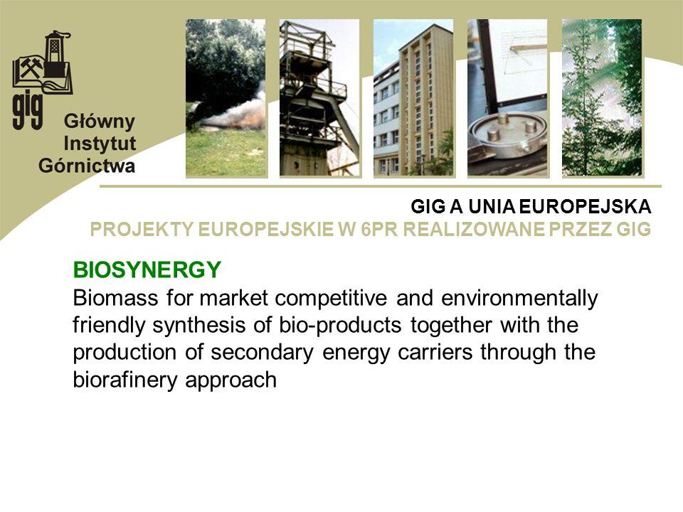 GIG A UNIA EUROPEJSKA PROJEKTY EUROPEJSKIE W 6PR REALIZOWANE PRZEZ GIG BIOSYNERGY Biomass for market competitive and environmentally friendly synthesi