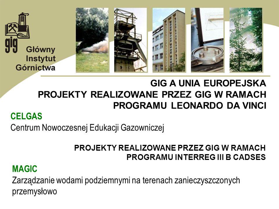 GIG A UNIA EUROPEJSKA PROJEKTY REALIZOWANE PRZEZ GIG W RAMACH PROGRAMU LEONARDO DA VINCI CELGAS Centrum Nowoczesnej Edukacji Gazowniczej PROJEKTY REAL