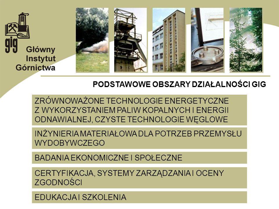 PODSTAWOWE OBSZARY DZIAŁALNOŚCI GIG BADANIA EKONOMICZNE I SPOŁECZNE ZRÓWNOWAŻONE TECHNOLOGIE ENERGETYCZNE Z WYKORZYSTANIEM PALIW KOPALNYCH I ENERGII O
