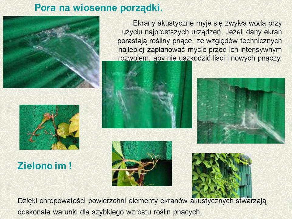 Dzięki chropowatości powierzchni elementy ekranów akustycznych stwarzają doskonałe warunki dla szybkiego wzrostu roślin pnących.