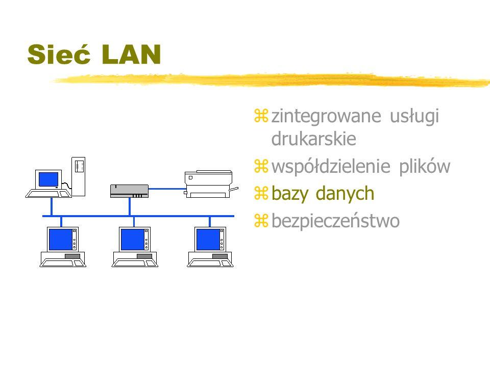 Sieć LAN z zintegrowane usługi drukarskie z współdzielenie plików z bazy danych z bezpieczeństwo