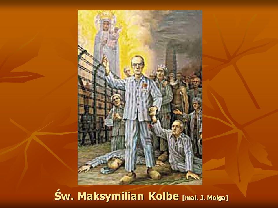 Św. Maksymilian Kolbe [mal. J. Molga]