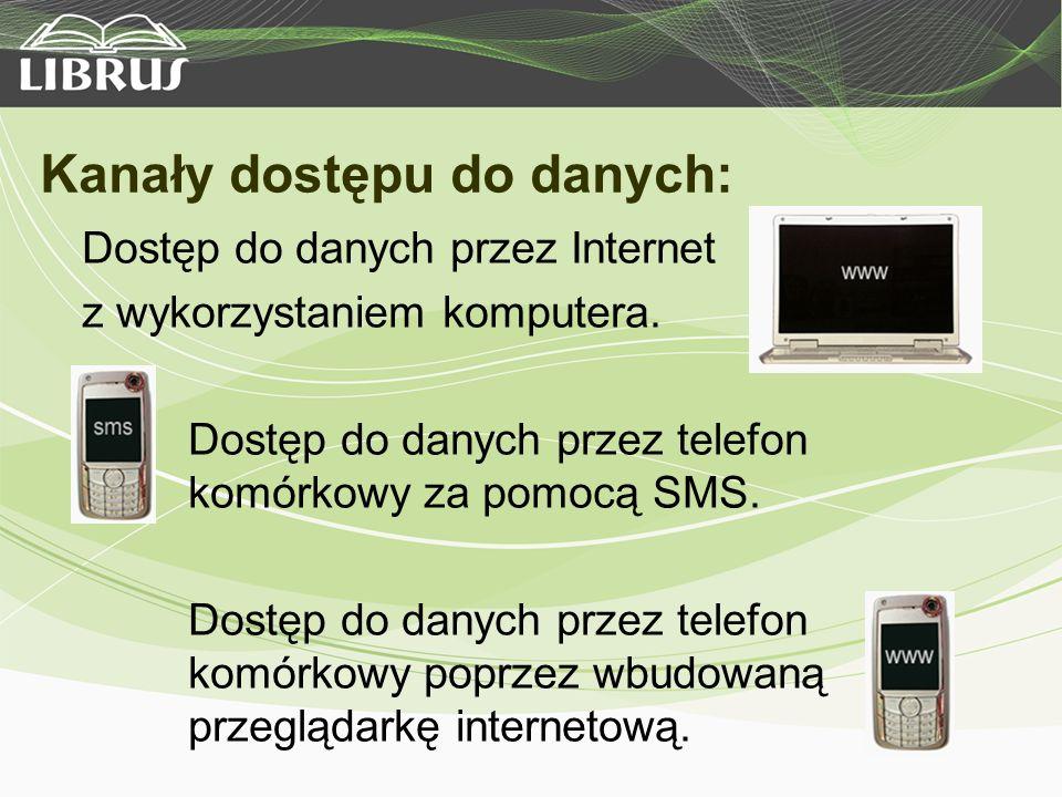 Kanały dostępu do danych: Dostęp do danych przez Internet z wykorzystaniem komputera.