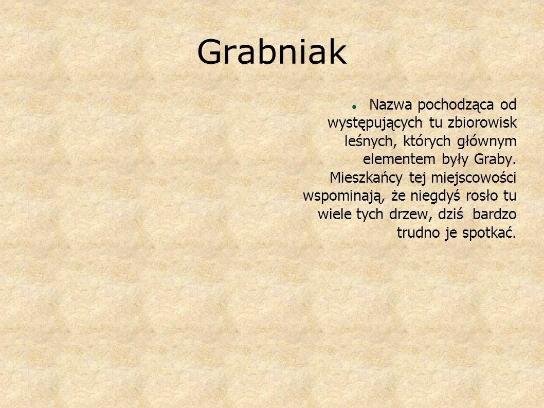Grabniak Nazwa pochodząca od występujących tu zbiorowisk leśnych, których głównym elementem były Graby. Mieszkańcy tej miejscowości wspominają, że nie