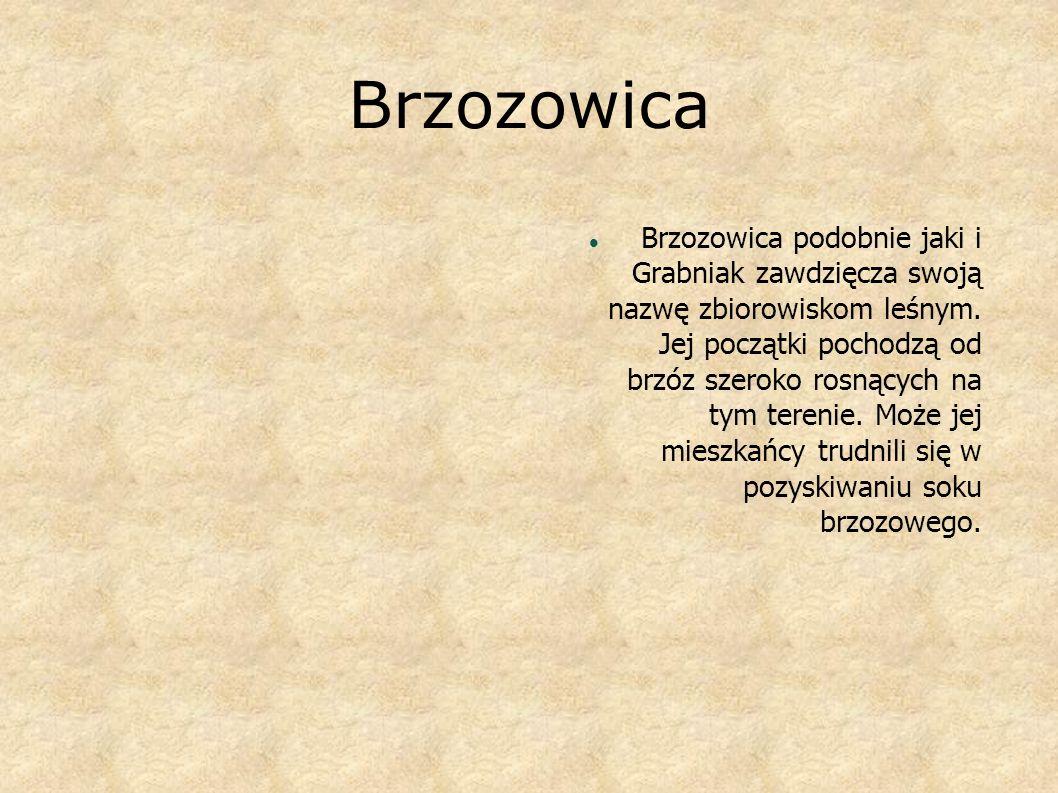 Brzozowica B rzozowica podobnie jaki i Grabniak zawdzięcza swoją nazwę zbiorowiskom leśnym. Jej początki pochodzą od brzóz szeroko rosnących na tym te