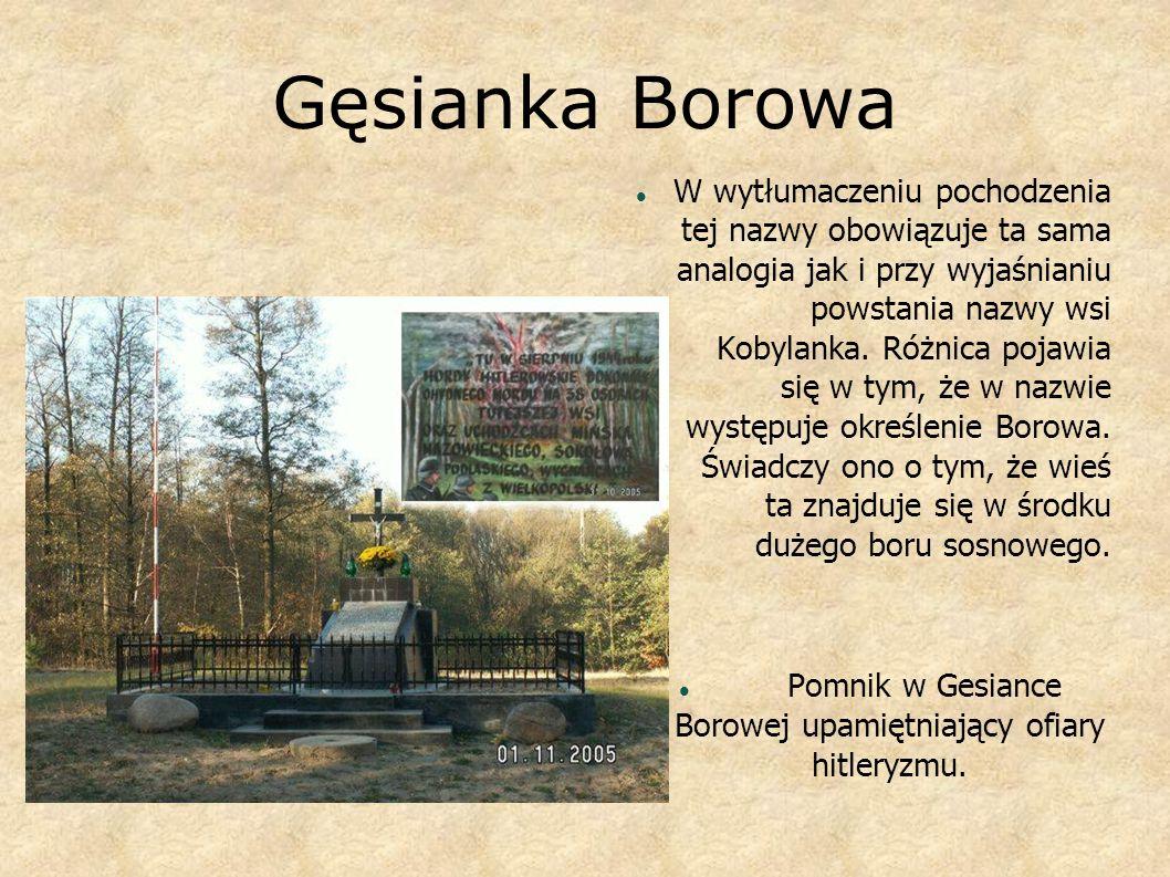 Gęsianka Borowa W wytłumaczeniu pochodzenia tej nazwy obowiązuje ta sama analogia jak i przy wyjaśnianiu powstania nazwy wsi Kobylanka. Różnica pojawi