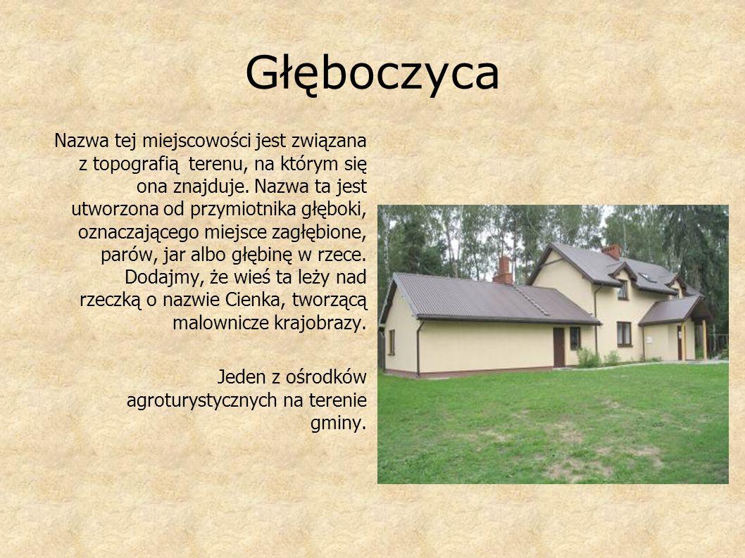 Rudno i Rudzienko Nazwy tych obu miejscowości wzięły swój początek od słowa ruda oznaczającej niegdyś nie tylko złoża jakiegoś kruszcu - w tym wypadku rudy darniowej ale również torfowisko.