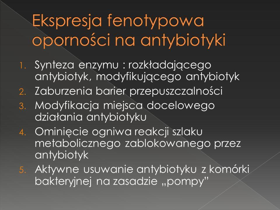 1. Synteza enzymu : rozkładającego antybiotyk, modyfikującego antybiotyk 2. Zaburzenia barier przepuszczalności 3. Modyfikacja miejsca docelowego dzia