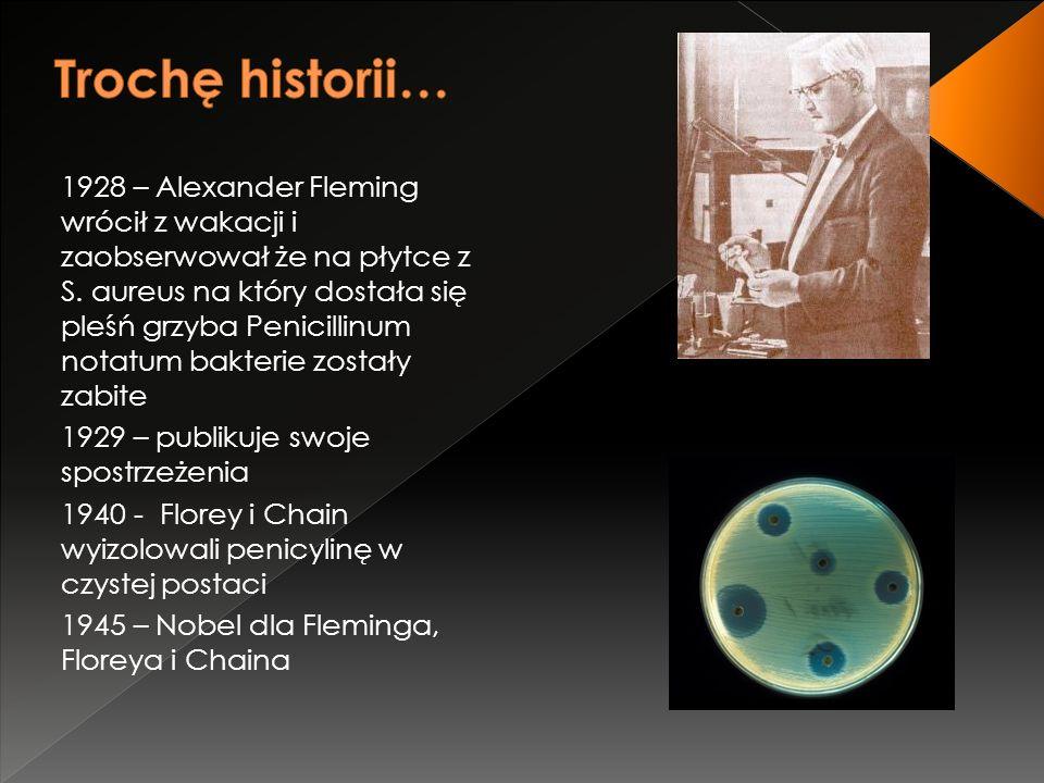 1928 – Alexander Fleming wrócił z wakacji i zaobserwował że na płytce z S. aureus na który dostała się pleśń grzyba Penicillinum notatum bakterie zost