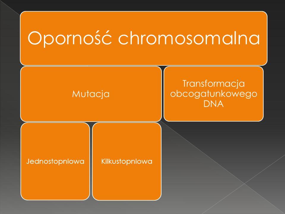 Oporność chromosomalna Mutacja Jednostopniowa Kilkustopniowa Transformacja obcogatunkowego DNA
