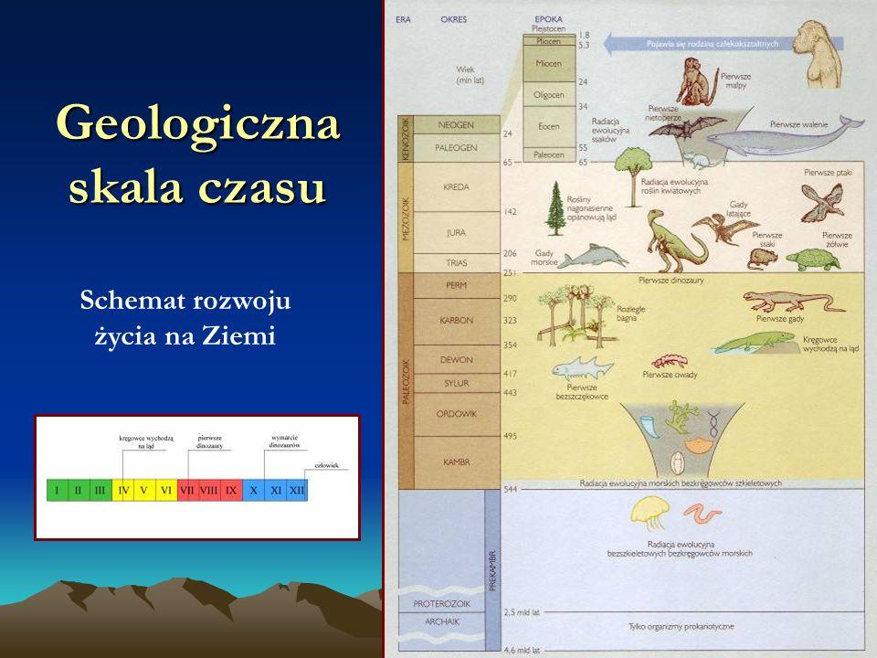 Geologiczna skala czasu Schemat rozwoju życia na Ziemi